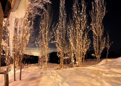 NIEVE Arboles Nieve Nocturno Hotel 02