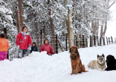 NIEVE Niños y mascotas Posada Farellones